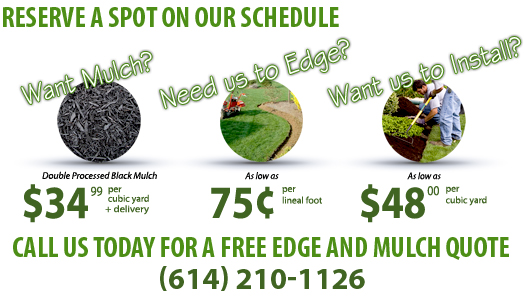 Edge and Mulch Seasonal Special