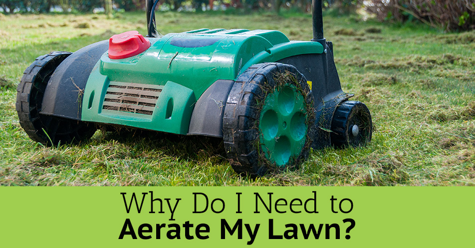 Lawn Aeration Central Ohio Lewis Center Columbus